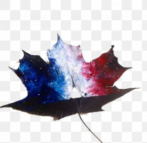 Leaves Star Painting - November 2015 Paris Attacks Drawing Art Illustration PNG