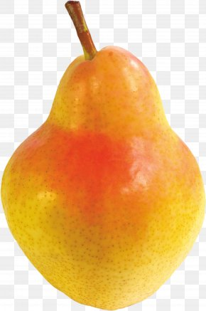 Pear Image - Asian Pear Fruit PNG