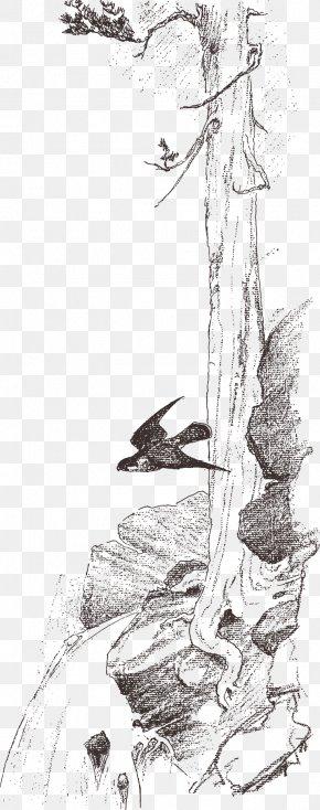 Swallow Stone Sketch Trees - Visual Arts Drawing Sketch PNG