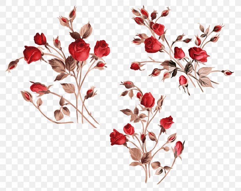 Flower Red Plant Branch Leaf, PNG, 1461x1160px, Flower, Branch, Flowering Plant, Leaf, Pedicel Download Free