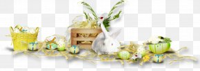 Easter - Easter Bunny Easter Postcard Holiday Greeting & Note Cards PNG