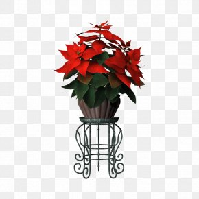 Flower Pot - Flowerpot Poinsettia Plant PNG