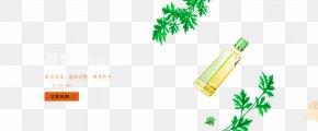 Oil Cosmetic Moisturizing Botanical Essence - Essential Oil Leaf PNG