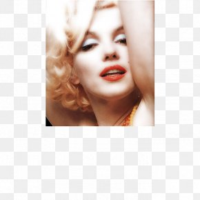 Blonde - Marilyn Monroe The Last Sitting Photography Actor Artist PNG