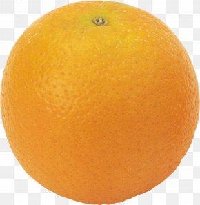 Orange Image, Free Download - Frozen Yogurt Bitter Orange Orange Oil Flavor PNG