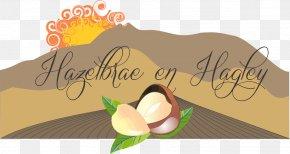 Design - Graphic Designer Illustration Logo PNG