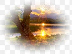 Sunrise On The Lake - Blog Sunset Tree PNG