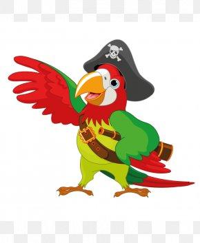 Parrot - Pirate Parrot Clip Art PNG