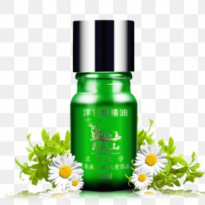 Green Chamomile Essential Oil - Essential Oil Perfume Aroma Compound Cosmetics PNG