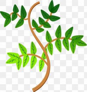 Green Leaves - Branch Leaf Tree Clip Art PNG