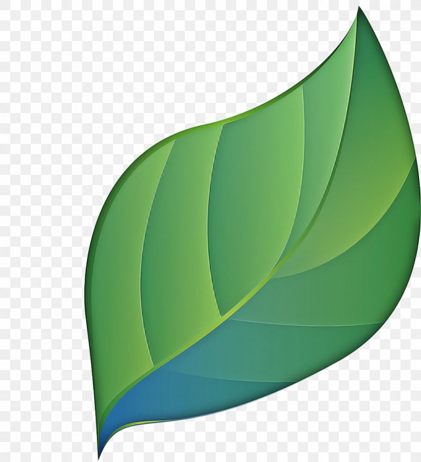 Green Leaf Logo, PNG, 1038x1139px, Leaf, Green, Logo, Plant Download Free