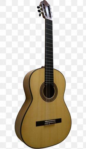 Acoustic Guitar - Acoustic Guitar Ukulele Tiple Cuatro Bass Guitar PNG