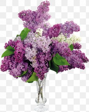 Vase - Common Lilac Flower Shrub Leaf PNG