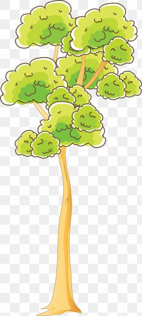 Tree - Tree Woody Plant Branch Clip Art PNG