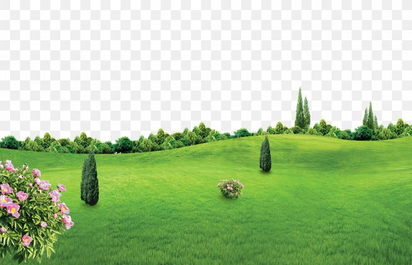 Lichun Poster, PNG, 2000x1287px, Spring, Biome, Ecosystem, Farm, Field Download Free