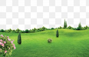 Spring New Green Background Effect - Lichun Poster PNG