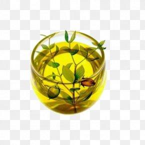Jojoba Oil Natural Plant Material - Skin Care Jojoba Oil Hair PNG