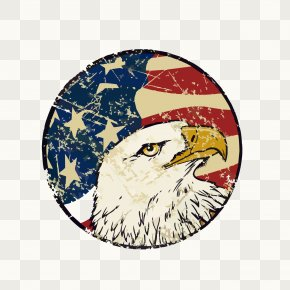 Hand-painted American Flag Eagle Decorative Background - Flag Of The United States Bald Eagle PNG