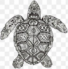 Turtle Drawing Hawksbill - Mandala Drawing Doodle Zentangle Coloring Book PNG