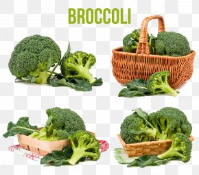Broccoli - Broccoli Cabbage Vegetable Food PNG