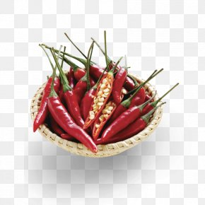 Pepper Pictures - Birds Eye Chili Chile De Xe1rbol Tabasco Pepper Cayenne Pepper PNG