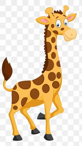 Animal Giraffe - Birthday Greeting Card Clip Art PNG