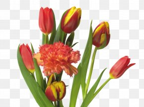 Tulips And Carnations - Tulip Mania Flower Bouquet PNG