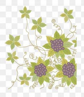 Vector Floral Flowers - Flower Euclidean Vector Vine Clip Art PNG