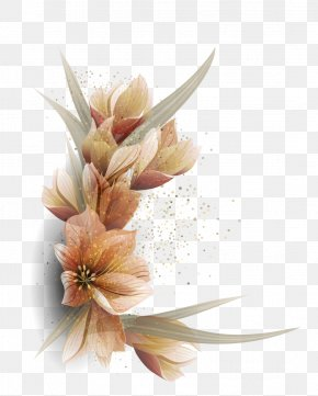 Vector Flowers Pictures - Floral Design Flower Euclidean Vector PNG