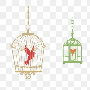 Bird Cage - Birdcage T-shirt PNG