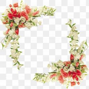 Floral Border Design Vector - Border Flowers Floral Design PNG