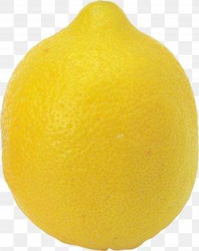 Lemon - Sweet Lemon Clementine Tangelo Citrus Junos PNG