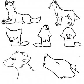 Easy Wolf Drawings - Gray Wolf Pikachu Drawing Cuteness Sketch PNG