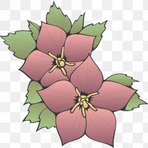Herbaceous Plant Holly - Bouquet Of Flowers Drawing PNG