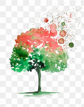 Watercolor Picture Material Tree - Watercolor Painting Tree Drawing PNG