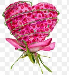 Rose - Alma Love Wallpaper PNG