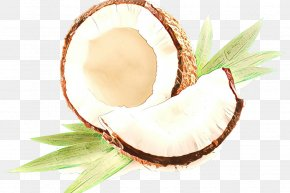 Plant Coconut Water - Oil Background PNG