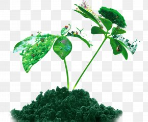 Fresh Spring Tree Island - Soil Euclidean Vector Plant PNG