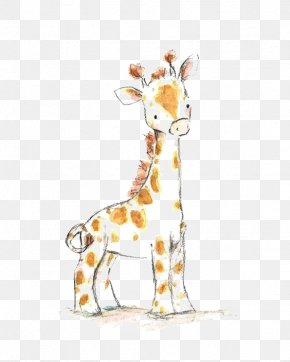 Giraffe - Giraffe Drawing Watercolor Painting Infant Child PNG