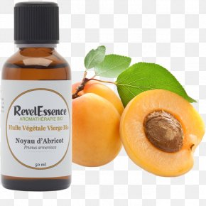 Apricot - Vegetable Oil Apricot Kernel Huile Alimentaire PNG