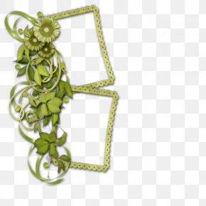 Chrysanthemum Flower Frame - Picture Frame PNG