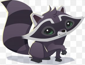 Raccoon - National Geographic Animal Jam Raccoon Tiger Leopard PNG