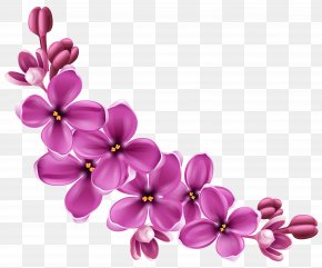 Spring Pink Floral Decor Picture Clipart - Flower Clip Art PNG