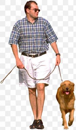 Walk - Dog Walking Pet Sitting Labrador Retriever Leash PNG