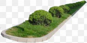Green Grass Garden Environment Rendering - Natural Environment Garden Green PNG