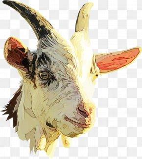 Clip Art Nigerian Dwarf Goat Sheep Boer Goat PNG