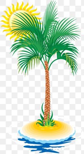 Tree - Arecaceae Tree Coconut Clip Art PNG