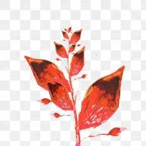 Coquelicot Flowering Plant - Leaf Red Plant Flower Tree PNG