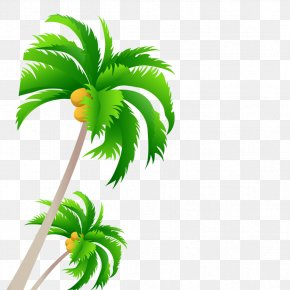Coconut Tree - Tree Coconut PNG