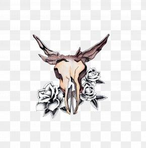 Deer - Deer Watercolor Painting Skull Drawing PNG